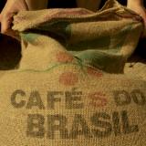 cafe0313